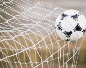 Pro-Bra Alessandria con la supporter card