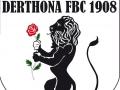 Serie D: partita da 'tripla' per il Derthona, contro il Borgosesia