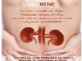 Giornata Mondiale del Rene: mercoledì medici e infermieri dell?ASL AL a disposizione di casalesi e novesi
