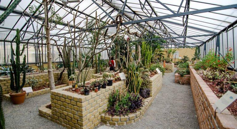 \u201cAlessandria green week\u201d, 10 giorni alla scoperta del Giardino Botanico