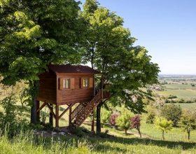 Una notte d'incanto tra le romantiche case sugli alberi