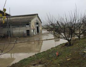 Confagricoltura danni alluvione novembre 2016
