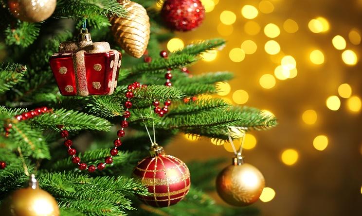 Albero Di Natale 8 Dicembre.A Valenza Il Natale Diventa Scintillante Al Via L Accensione Degli