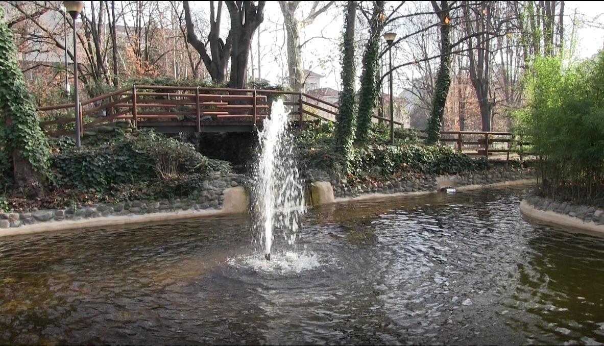 L 39 acqua torna a zampillare nel laghetto dei giardini della for Quali pesci mettere nel laghetto