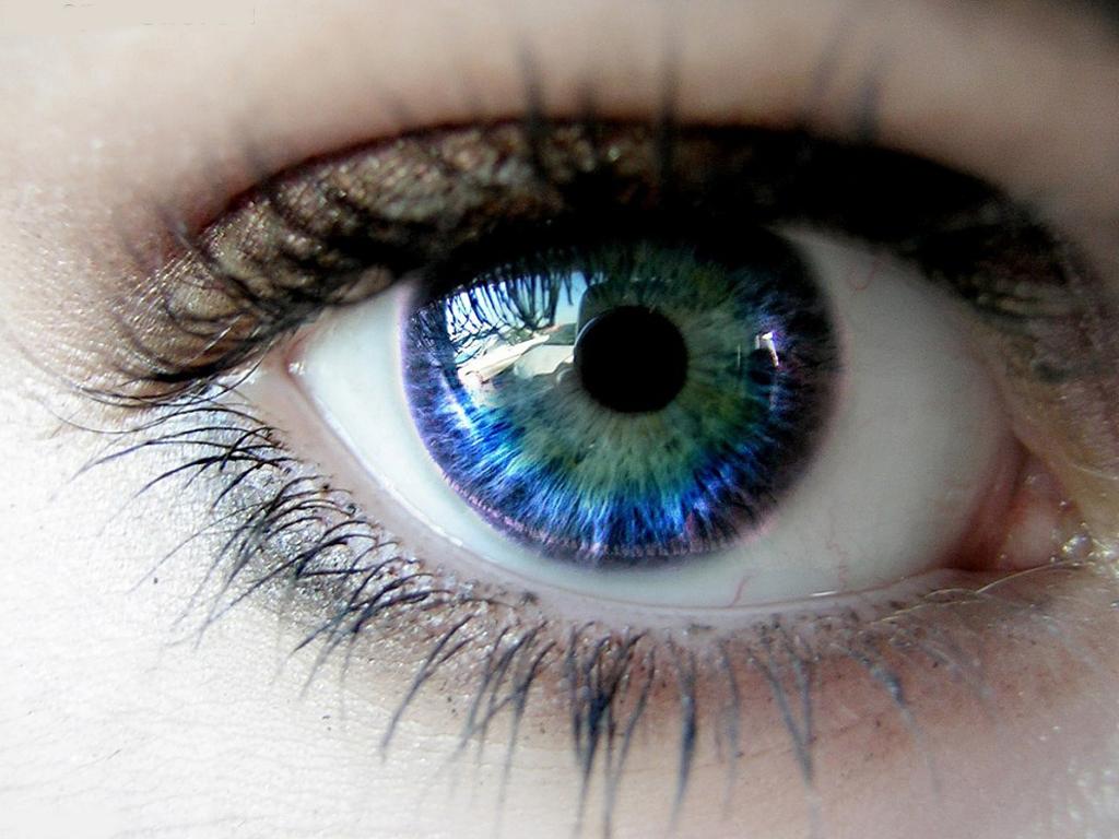 Settimana mondiale contro il glaucoma: visite gratuite ad Alessandria