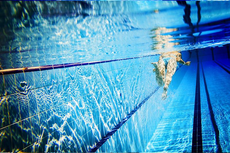 Guida alle piscine aperte in provincia - Piscina valdobbiadene orari nuoto libero ...