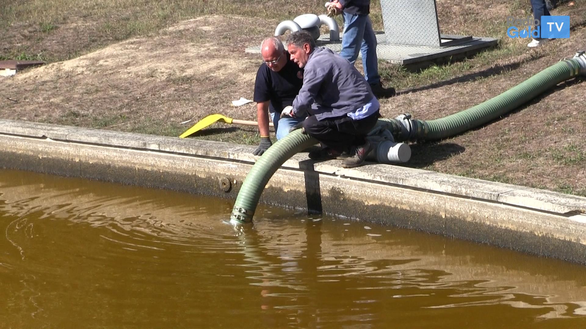 Aspirata una parte di acqua sporca al laghetto del for Pulizia laghetto