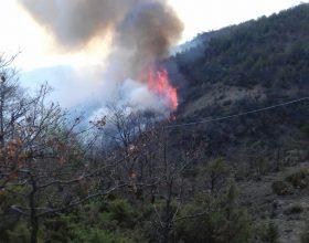 Incendio boschivo a Ponzone