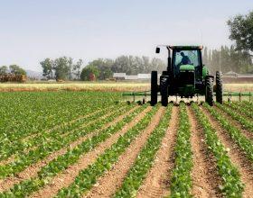 Siccità: gasolio a prezzo agevolato per le imprese agricole piemontesi