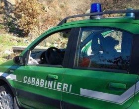 Abbandona rifiuti edili e urbani vicino a un bosco: scoperto dai Carabinieri Forestali di Ovada