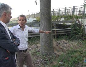 """Crepa Ponte Tiziano: """"Nessun pericolo ma presto una perizia"""""""