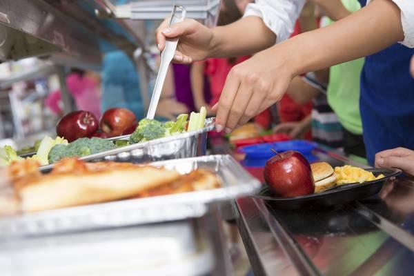 Premiate le classi e le maestre del concorso sull'alimentazione a scuola