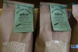 Il riso non è tutto uguale. Viaggio nell'azienda Deambrogio