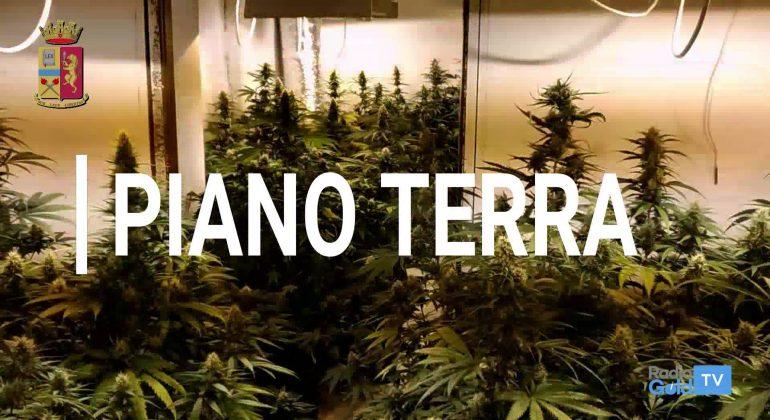 Polizia Marijuana Balzola