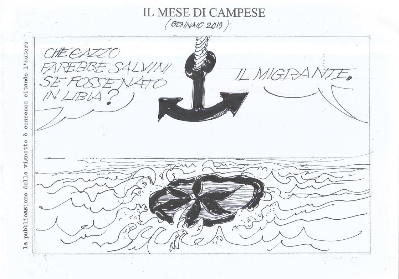 vignetta_ancora