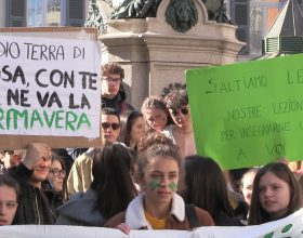 Ambiente fridays for future Alessandria
