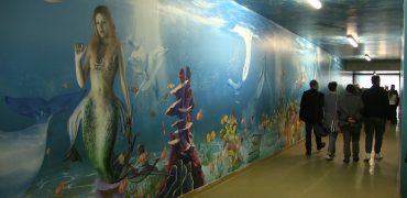 aquarium_carcere