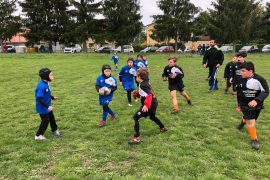 cuspo rugby