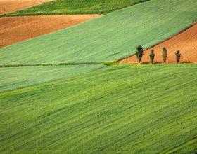 Monferrato- Photo by Gaetano Cessati on Unsplash