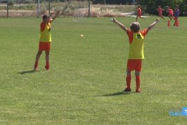alessandria calcio summer camp