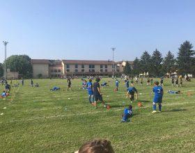 cuspo rugby festival
