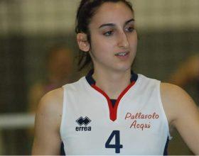 Erica Grotteria