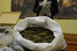 Immagine Coltivava marijuana in una serra, 64enne sorpreso con 25 chili d'erba