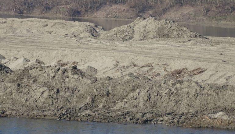 Isola sul fiume Po Casale