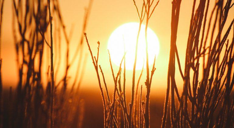 Immagine Il 2020 del Piemonte è stato il sesto più caldo degli ultimi 63 anni
