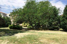 Area verde Alessandria