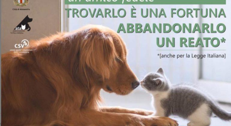 """""""Non abbandonarmi"""": su Radio Gold Tv Stefano Venneri racconta il mondo degli animali"""