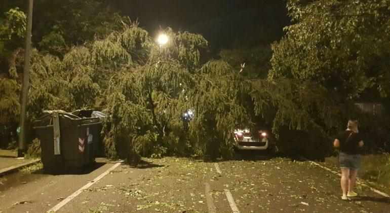 Tempesta ad Alessandria: oltre 200 le chiamate ai Vigili del Fuoco