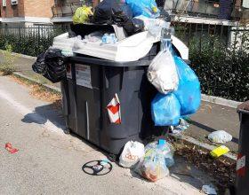 Cassonetti rifiuti plastica Alessandria