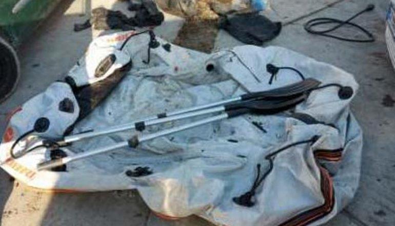 Immagine Denunciati due pescatori di frodo a Villanova: liberati dieci pesci siluro