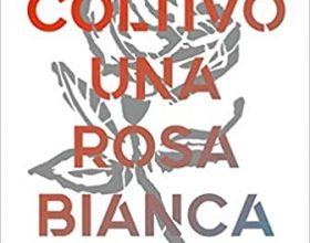 """""""Coltivo una rosa bianca"""": la nonviolenza nella canzone d'autore"""