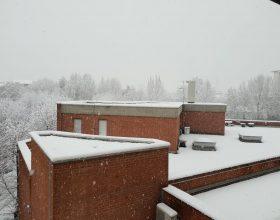 Neve su tutto il Piemonte: previsti sino a 30 centimetri nell'Alessandrino