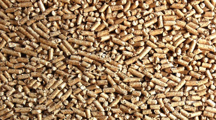 Immagine Vende bancali di pellets online ma è una truffa: in otto gli consegnano in tutto 15 mila euro