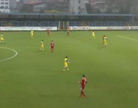 Serie C, Pergolettese-Alessandria 0-1 FINALE