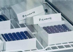 Immagine Vaccino covid: in Piemonte finora inoculate più di 355 mila dosi