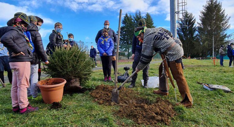 Acqui Terme ha 9 pini in più: genitori e scout fanno un regalo alla città