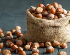 Nutella Day e nocciole: in provincia il 60% della produzione destinata alla Ferrero