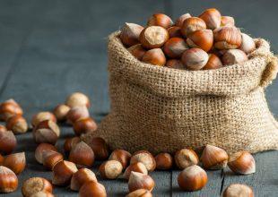 In provincia di Alessandria perso tra il 50% e l'80% della produzione di nocciole