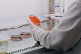 Bollettino coronavirus: in Piemonte 2167 nuovi positivi e 26 decessi