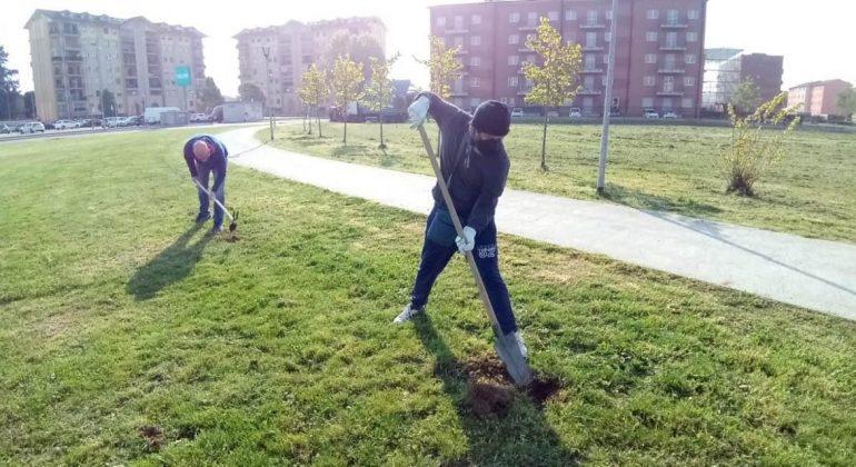 Al Cristo boom di iniziative per il quartiere: piantumati 17 alberi