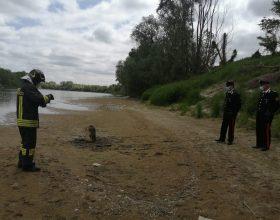 Bombola del gas scambiata per ordigno bellico fa scattare intervento sulla sponda del Po