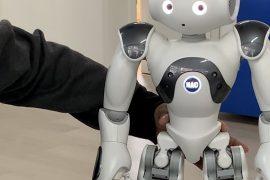 Sfida tra robot: anche l'istituto Cellini di Valenza in lizza con le migliori scuole d'Italia