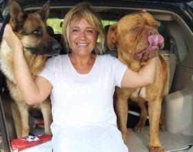 Noah e Lady sono tornati a casa. Ritrovati i due cani smarriti a Casalbagliano