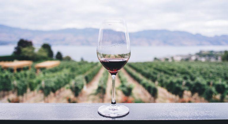 Un corso per diventare assaggiatori di vino: ecco la proposta dell'Onav