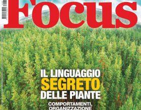 Il linguaggio segreto delle piante: Focus racconta un mondo tutto da scoprire