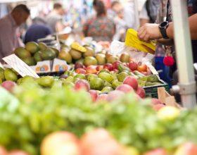 """Coldiretti preoccupata per la produzione di frutta in Piemonte: """"Il clima impazzito fa calare la produzione"""""""